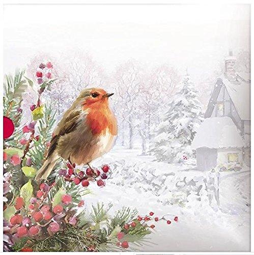 Luxury Christmas Cards (ph-xba0024)–Christmas Robin–dalla serie Art House–Confezione di 16carte–Finitura glitterata Paper House