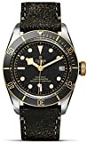 Mens Tudor Heritage Black Bay Gold 79733N 41mm