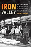 img - for Iron Valley: The Transformation of the Iron Industry in Ohio s Mahoning Valley, 1802 1913 (Trillium Books) book / textbook / text book