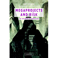 Megaprojects and Risk: An Anatomy of Ambition (English Edition)