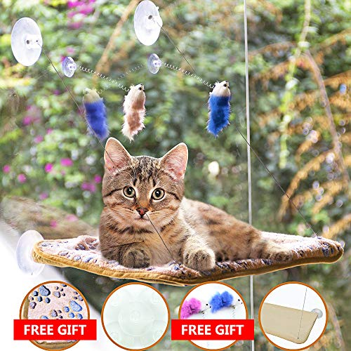 AWOOF Pet Cat Hammock Window Perch Set with Blanket and Interactive Feather Cat Toys, Big Cat Window Bed Sunny Seat, Durable Steady Cat Shelf for Kitten