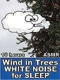 Wind in Trees White Noise for Sleep 10 Hours ASMR