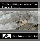 The Animal Kingdom - God's Glory