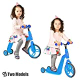 VOKUL Mini Kick Scooter for Toddler 2-5 Years with Big Wheel-Age(2-in-1 Function)