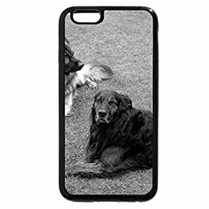 iPhone 6S Plus Case, iPhone 6 Plus Case (Black & White) - rex and arco