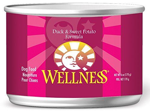 Wellness Complete Health Natural Wet Canned Dog Food, Duck & Sweet Potato, 6-Ounce Can (Pack Of 24)