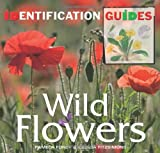 Wild Flowers: Identification Guide (Identification Guides)
