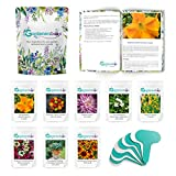 Gardener's Box Yearly Subscription, Garden Kit - Seeds delivered to your doorstep monthly, gift for gardener