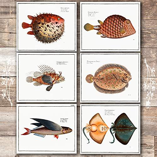 Exotic Vintage Fish Wall Art Prints (Set of 6) - Unframed - 8x10s | Vintage Fishing Decor ()