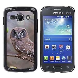 ROKK CASES / Samsung Galaxy Ace 3 GT-S7270 GT-S7275 GT-S7272 / INSPECTING OWL / Delgado Negro Plástico caso cubierta Shell Armor Funda Case Cover