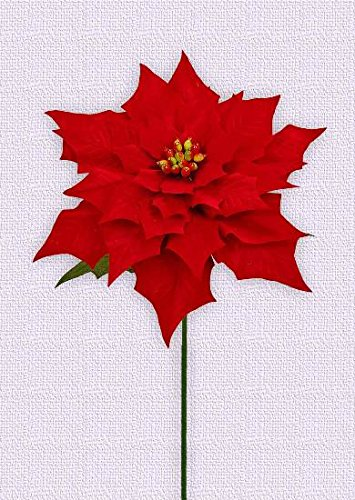 A-128W1 30''Soft Touch Poinsettia with Stem(Red,6pcs) by Flora Bunda