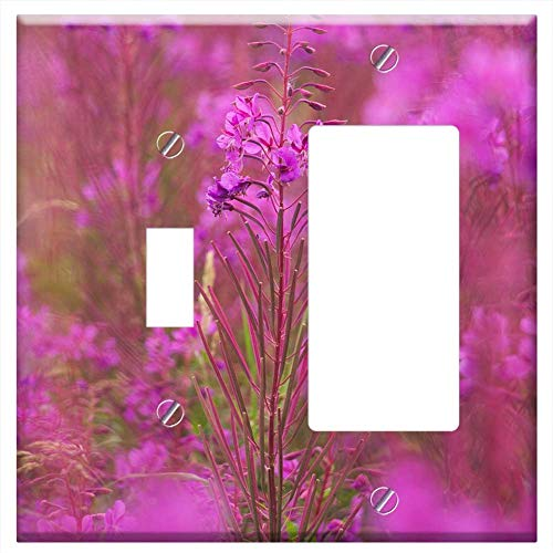 (1-Toggle 1-Rocker/GFCI Combination Wall Plate Cover - Heather Plant Flower Bloom Flora Purple Erica)
