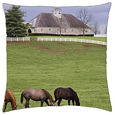 donamire horse farm in lexington kentucky - Throw Pillow Cover Case (18