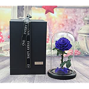 sexyrobot Beauty and The Beast Red Rose, Preserved Fresh Flower with Fallen Petals in a Glass Box 69