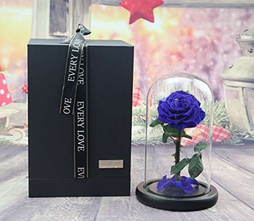 sexyrobot Beauty and The Beast Rose, Handmade Preserved Fresh Flower Real Rose with Fallen Petals in a Glass, with Exquisite Valentine's Day Gift Box (Blue)