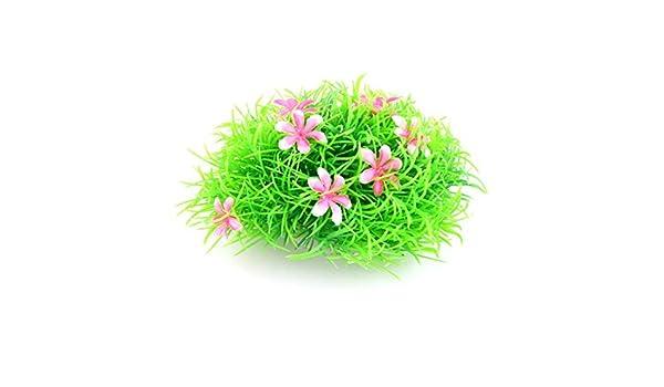 Amazon.com : eDealMax cerámica plástico Base agua de acuario decoración de la hierba Planta 5 cm Altura Rosa Verde : Pet Supplies