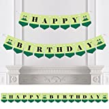 Twins Two Peas In a Pod - Birthday Party Bunting Banner - Green Party Decorations - Happy Birthday