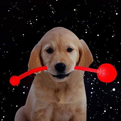 LED Frisbee Pelota del Perro juguete tiro bola luminosa de 3 ...