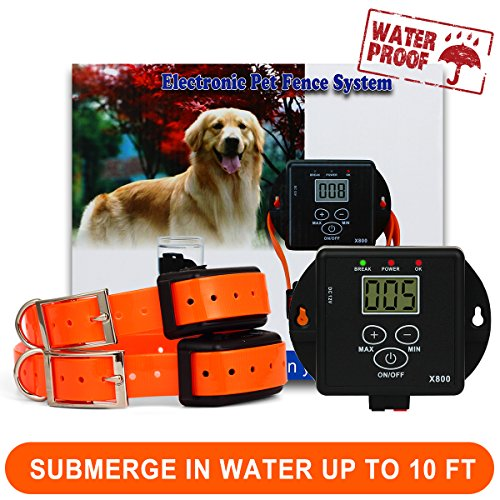 Dog Collar Pool Alarm