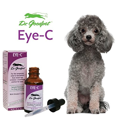 Vitamin C And Zinc Eye Drops For Dogs