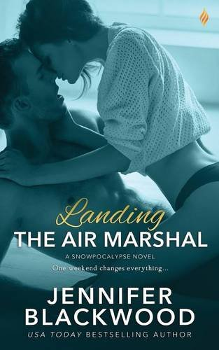 book cover of Landing the Air Marshal