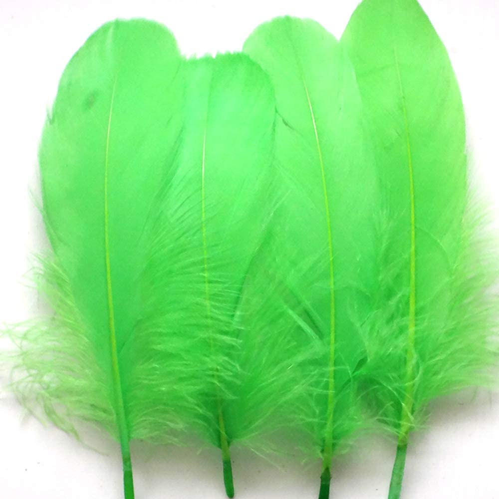 300 Pcs Colorful Feathers Feathers Bulk for DIY Craft Mardi Gras Party Decorations Carnival Costume