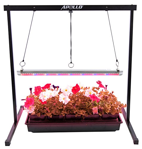 Purple Led Grow Lights