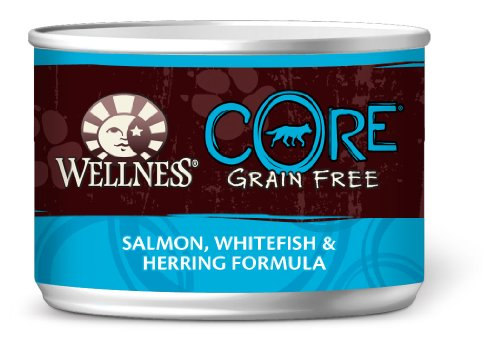 Wellness Canned Dog Food for Adult Dogs, Core Grain Salmon Whitefish and Herring Formula, 24-Pack of 5-1/2-Ounce Cans, My Pet Supplies