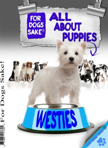 All About West Highland Terrier Puppies