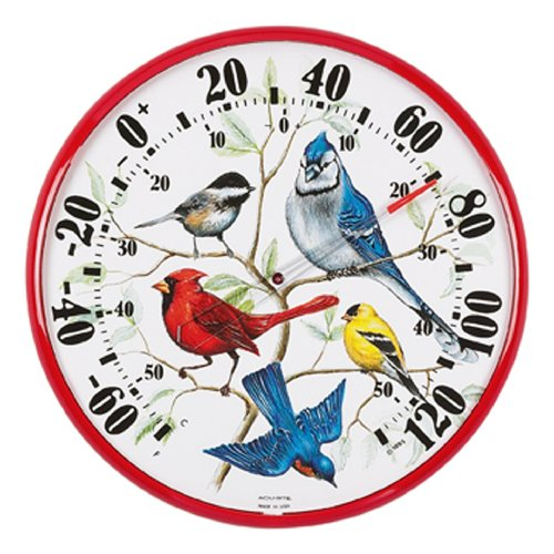 AcuRite 01581 12 5 Inch Thermometer Songbirds