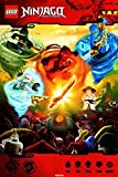Pyramid America Lego Ninjago Poster Art Print