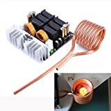 1pc 1000W ZVS Induction Heating Board Module Low Voltage Heater DIY Board Module with Tesla Coil