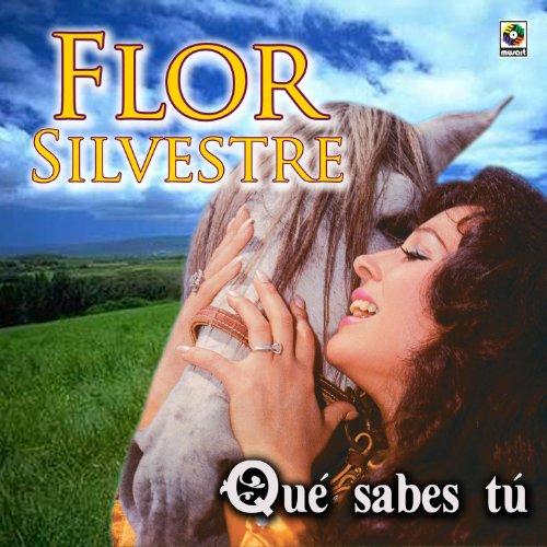 Amazon.com: Que Sabes Tu: Flor Silvestre: MP3 Downloads