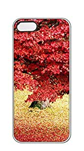 NBcase Grand Maple Tree hard PC iphone 5 cases for guys