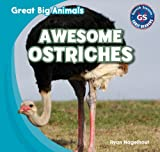 Awesome Ostriches, Ryan Nagelhout, 143399416X