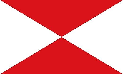 magFlags Bandera Large Provincia Marítima de Vigo, España | Bandera Paisaje | 1.35m² | 90x150cm: Amazon.es: Jardín
