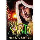 Bad Santa (Paranormal Protection Agency Book 9)