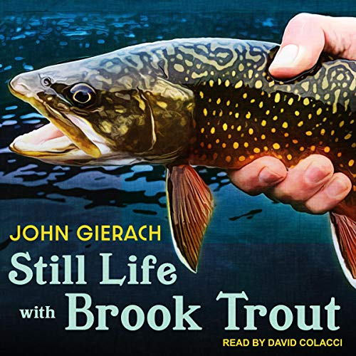 Pdf Entertainment Still Life with Brook Trout