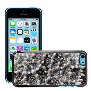 Hot Style Cell Phone PC Hard Case Cover // M00130362 Starfish Macro Close Ocean Sea // Apple iPhone 5C