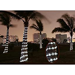 LE Solar Power Rope Lights, Waterproof, 16.5ft 50 LEDs String Lights, Portable, with Light Sensor, Decoration, Christmas Tree, Thanksgiving, Wedding, Party, Garden, Lawn, Patio (Daylight White)