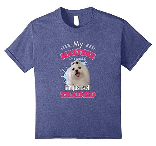 Maltese Dogs Lover T-Shirt I Love Maltese Dogs Fans Gift