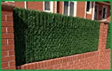 e-joy Artificial Hedge Fence Privacy Screen for Chain Link fence Outdoor Faux Hedge Privacy Screen Fence (Covers 10 Lineal Feet of fence) 5x10 by