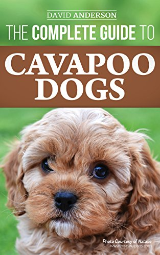 Dog Poo Breeds (The Complete Guide to Cavapoo Dogs: Everything you need to know to sucessfully raise and train your new Cavapoo puppy)