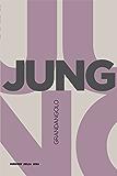 Jung (Grandangolo Filosofia)
