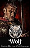 Wolf: The Iron Wolf Company Book 2