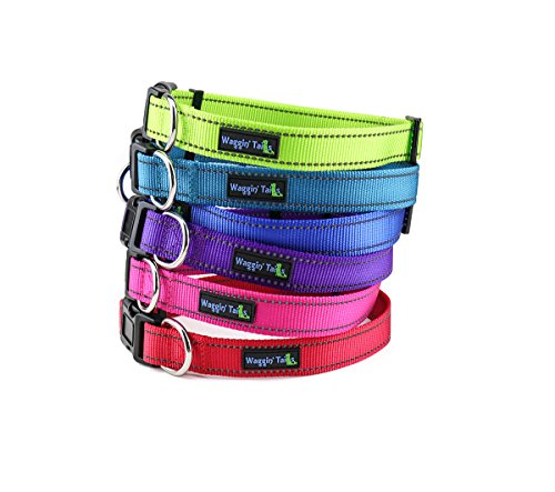 Waggin Tails Classic Reflective Dog Collar (Medium, Vibrant Purple)