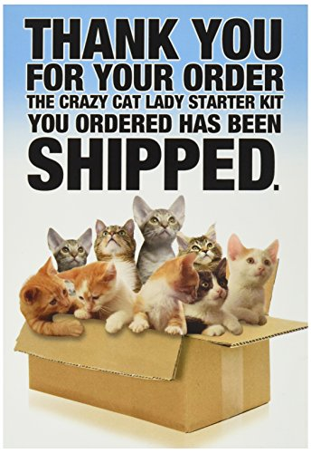 8016Z Cat Lady Starter Kit