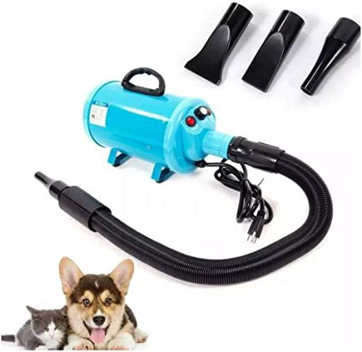 Gravitis 2800W Stepless Speed Perro Gato Mascotas Secador de Pelo Secador Blaster Soplador: Amazon.es: Productos para mascotas