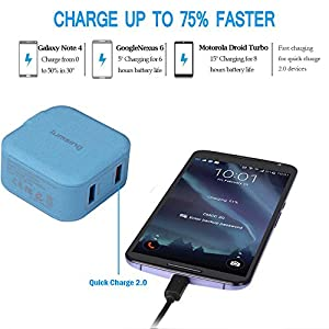 Lumsing Quick Charge 2 Port Wall Charger, 20W QC2.0 Dual USB Port Travel Charger for iPhone,Samsung Galaxy S5 S6 Edge Note 4 5, Google Nexus 6, Sony Xperia Z3 Z4 Tablet-Blue