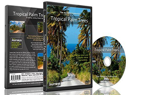 Fitness Journeys - Tropical Palm Trees, for indoor walking, treadmill and cycling workouts